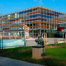 مستشفى هايدلبرغ الجامعي